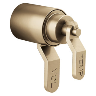 Tempassure<sup>®</sup> Thermostatic Trim Handle Kit - Industrial Lever